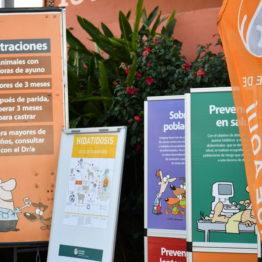 Expo Prado 2019 - Día 10 (250)