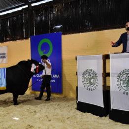 Expo Prado 2019 - Día 10 (253)
