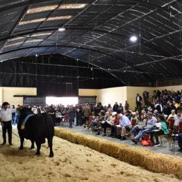 Expo Prado 2019 - Día 10 (255)