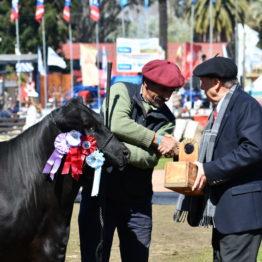 Expo Prado 2019 - Día 11 (107)