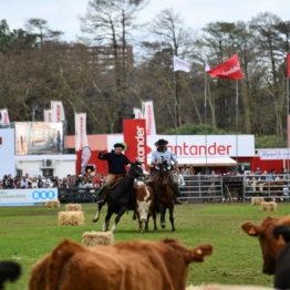 Expo Prado 2019 - Día 11 (206)