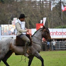 Expo Prado 2019 - Día 11 (208)