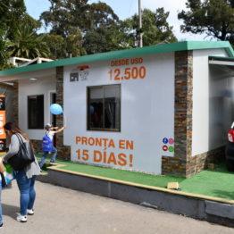 Expo Prado 2019 - Día 12 (157)