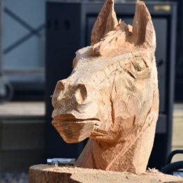 Expo Prado 2019 - Día 12 (197)