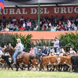 Expo Prado 2019 - Día 12 (33)