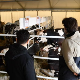 Expo Prado 2019 - Día 2 (115)