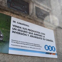 Expo Prado 2019 - Día 2 (46)