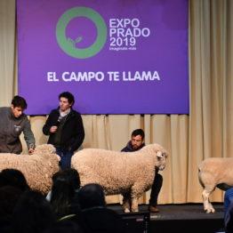 Expo Prado 2019 - Día 2 (7)