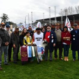 Expo Prado 2019 - Día 3 (138)