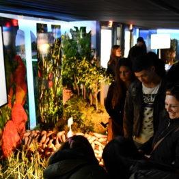 Expo Prado 2019 - Día 3 (81)