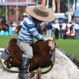 Expo Prado 2019 - Día 4 (177)