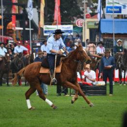 Expo Prado 2019 - Día 4 (184)