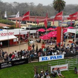 Expo Prado 2019 - Día 4 (2)