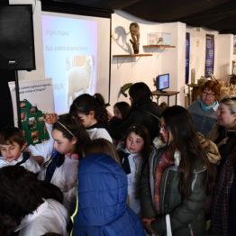 Expo Prado 2019 - Día 4 (78)