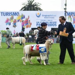 Expo Prado 2019 - Día 5 (113)