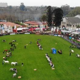 Expo Prado 2019 - Día 5 (4)