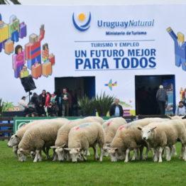 Expo Prado 2019 - Día 5 (66)