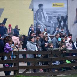 Expo Prado 2019 - Día 5 (68)