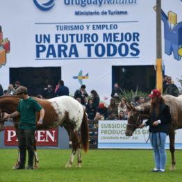 Expo Prado 2019 - Día 5 (83)