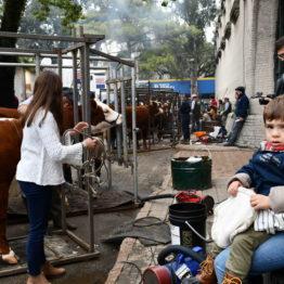 Expo Prado 2019 - Día 7 (107)