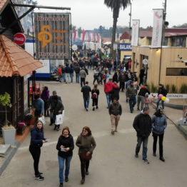 Expo Prado 2019 - Día 7 (5)