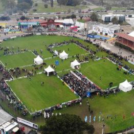 Expo Prado 2019 - Día 8 (6)