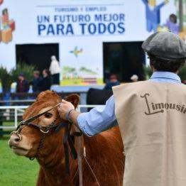 Expo Prado 2019 - Día 9 (25)