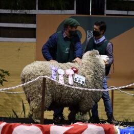 Expo Prado 2020 - Dia 10 (137)
