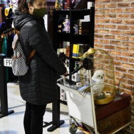 Expo Prado 2020 - Dia 11 (159)
