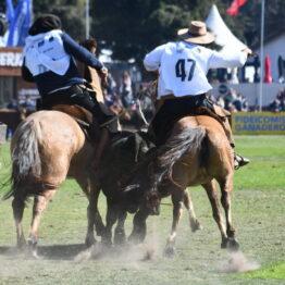 Expo Prado 2020 - Dia 11 (163)