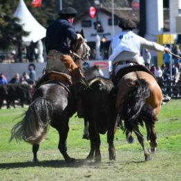 Expo Prado 2020 - Dia 11 (168)