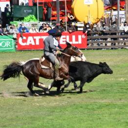 Expo Prado 2020 - Dia 11 (175)
