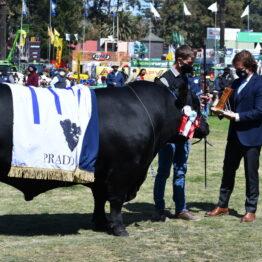 Expo Prado 2020 - Dia 11 (79)