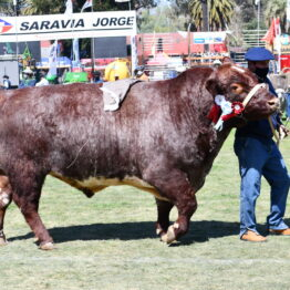 Expo Prado 2020 - Dia 11 (81)