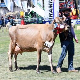 Expo Prado 2020 - Dia 11 (99)