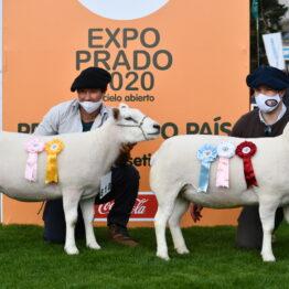 Expo Prado 2020 - Dia 3 (16)