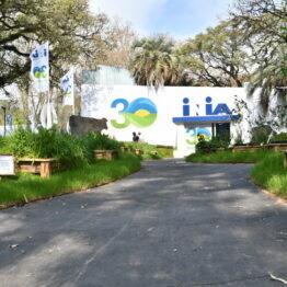 Expo Prado 2020 - Dia 3 (78)