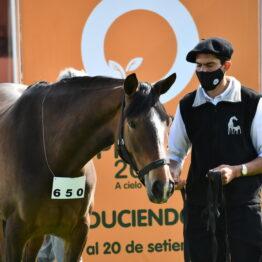 Expo-Prado-2020-Dia-4 (78)