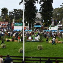 Expo-Prado-2020-Dia-5 (30)