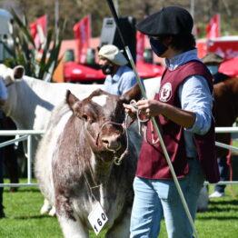 Expo Prado 2020 - Dia 8 (15)