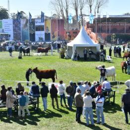 Expo Prado 2020 - Dia 8 (21)