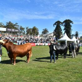 Expo Prado 2020 - Dia 8 (37)
