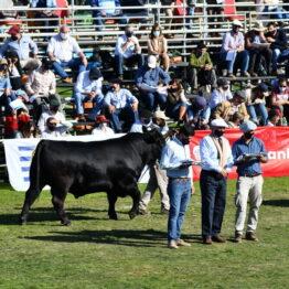Expo Prado 2020 - Dia 8 (65)