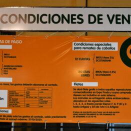 Expo Prado 2020 - Dia 9 (106)