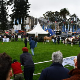 Dia 1 - Expo Prado 2021 (106)