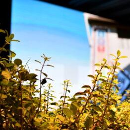 Dia 1 - Expo Prado 2021 (109)