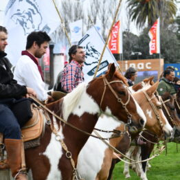 Dia 2 - Expo Prado 2021 (237)