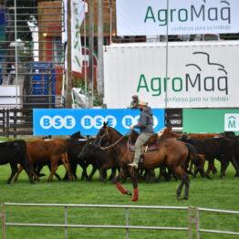 Dia 2 - Expo Prado 2021 (58)
