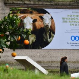 Dia 2 - Expo Prado 2021 (6)