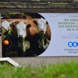 Dia 2 - Expo Prado 2021 (7)